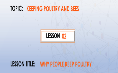 02. Why people keep poultry