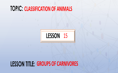 15. Groups of carnivores.