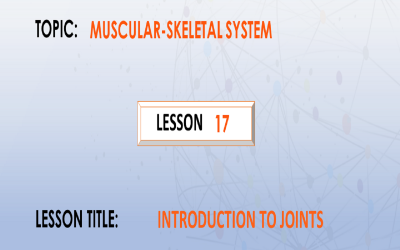 17 .Introduction To Joints.