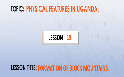 19. Formation of block mountains.