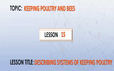 15. Describing the systems of keeping poultry.